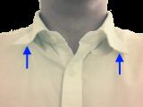 Homemade Collar Stays